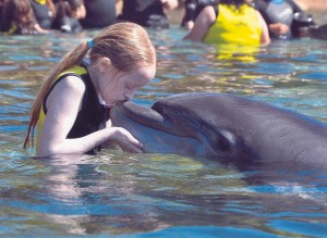 I had a great day with the dolphins!